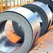 کاهش قیمت تمام مقاطع فولادی/نرخ ارز دلیل اصلی